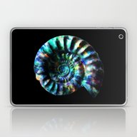 Fossilized Ammonite Laptop & iPad Skin