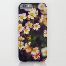 hidden II iPhone 6 Slim Case