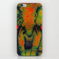 Elephant With Tiny Bird iPhone & iPod Skin