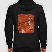 New York City Foliage Hoody