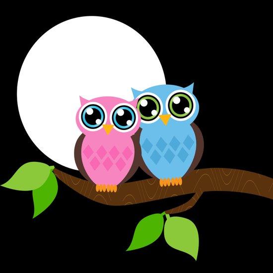 Night Owls Under the Moon Art Print