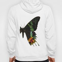 Sunset Moth Wing Hoody