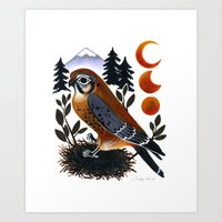 The Blue Ridge Kestrel Art Print