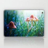 Fairytopia Laptop & iPad Skin