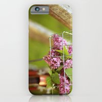 iPhone & iPod Case featuring This Is A Love Story by Alicia Bock