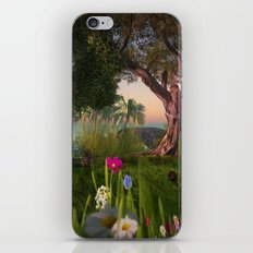 Multitude of Color iPhone & iPod Skin