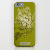 iPhone & iPod Case featuring Hydrangea on Moss Cloud by mel @ my postcard heaven