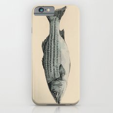 A Fish Slim Case iPhone 6s