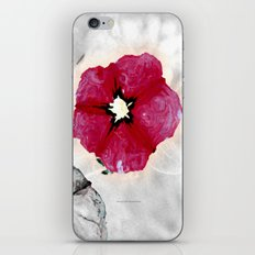 Pansy 091 iPhone & iPod Skin