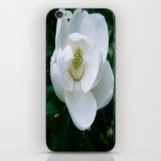 Magnolia Flower iPhone & iPod Skin