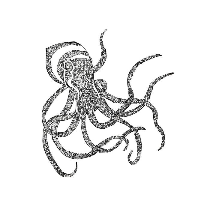 Line Art Octopus : Octopus one line drawing art print by liner artwork
