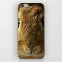 Little Rabbit. iPhone & iPod Skin
