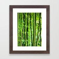 Bamboo Rods Framed Art Print