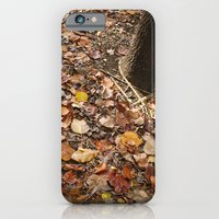 iPhone & iPod Case featuring Looking Down by zucker photo