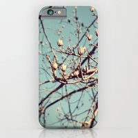 Mountain Nature iPhone 6 Slim Case