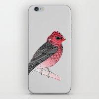 Scarlet Rosefinch iPhone & iPod Skin