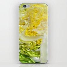iceberg lettuce I iPhone & iPod Skin