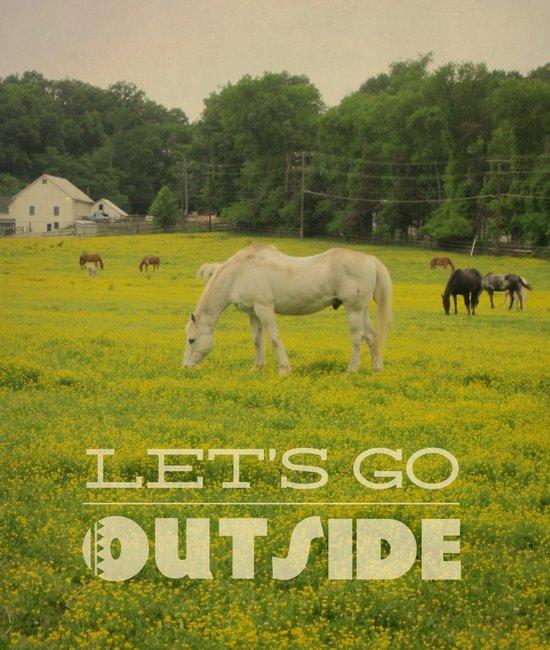 Let's Go Outside Art Print