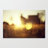 A Flare of Sun Canvas Print