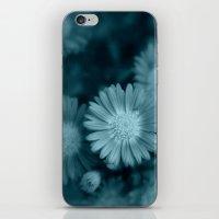 Daisy Blue iPhone & iPod Skin
