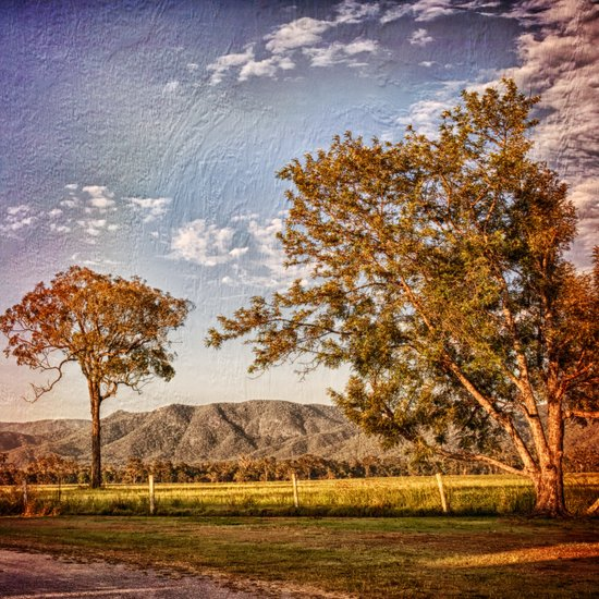 Trees and hills in the country Art Print