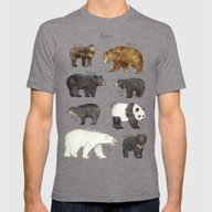 Bears Mens Fitted Tee Tri-Grey SMALL