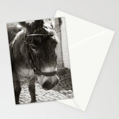 { cobblestone trooper } Stationery Cards