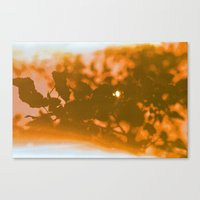 Orange Haze And White Su… Canvas Print