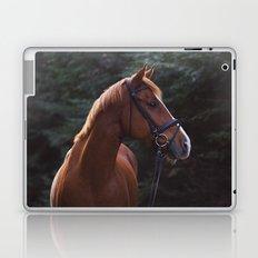 henry.  Laptop & iPad Skin