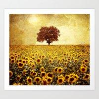 Lone Tree & Sunflowers F… Art Print
