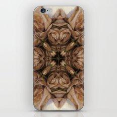 Unfolding iPhone & iPod Skin