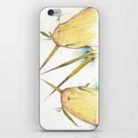 Narwhal Brawl iPhone & iPod Skin