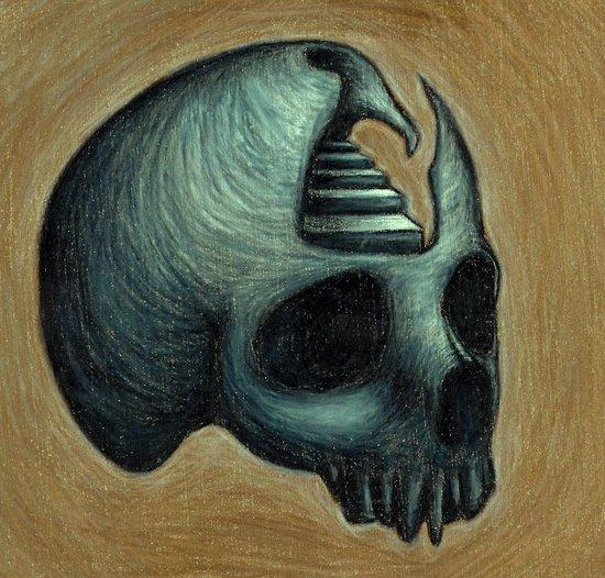 Skull II Art Print