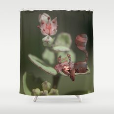 Belladonna Shower Curtain
