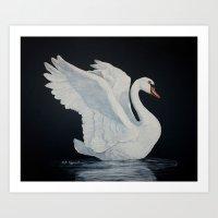 Swan painting Art Print