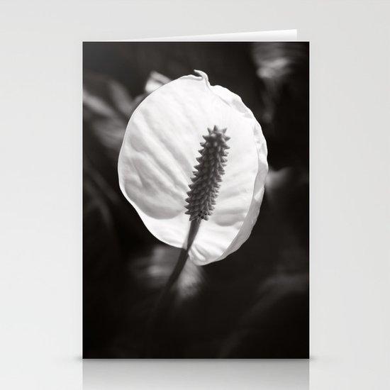 Secret Garden ~ No.2 Stationery Card