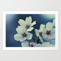Blossoming - Beautiful Spring Blooms Art Print