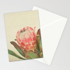 Pink Ice Stationery Cards