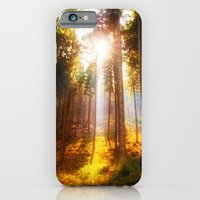 iPhone & iPod Case featuring Sunshine forest by Pirmin Nohr
