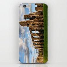 Mynachlog Nedd iPhone & iPod Skin