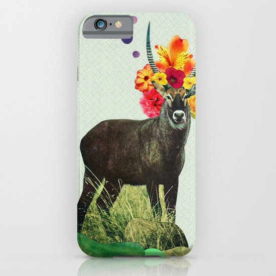 i've been searching for something i've never seen iPhone & iPod Case
