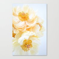Honeybee Paradise Canvas Print
