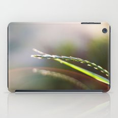 Evening Light iPad Case