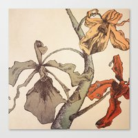 Hello Orchids Canvas Print