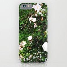 chintz iPhone 6 Slim Case