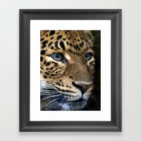 Chinese Panther Framed Art Print