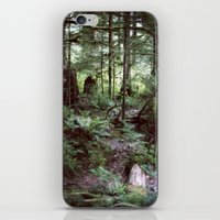 Vancouver Island Rainforest iPhone & iPod Skin