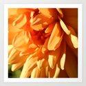 Vermont Autumn Golden Flower Art Print