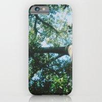 adelaide leaves iPhone 6 Slim Case