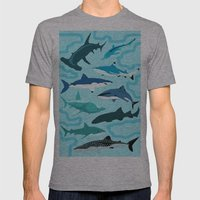 Sharks Mens Fitted Tee Athletic Grey SMALL